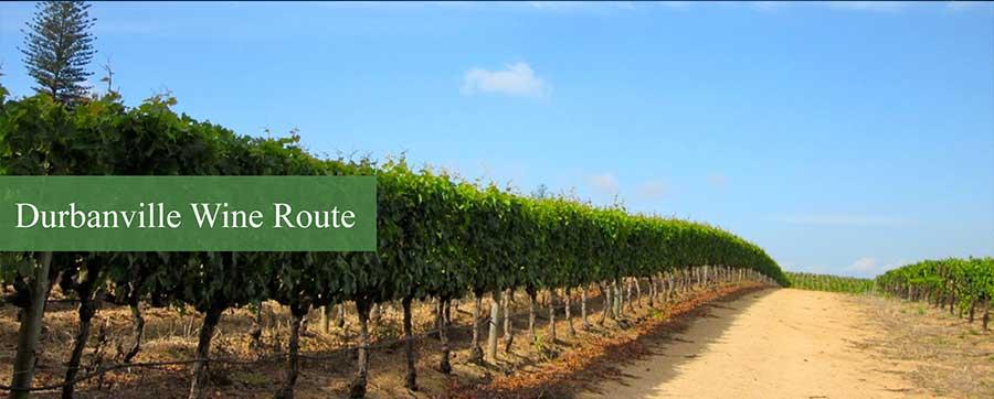 durbanville_wine_route1
