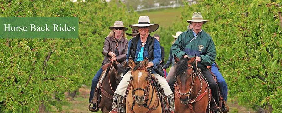 horse-back-rides1