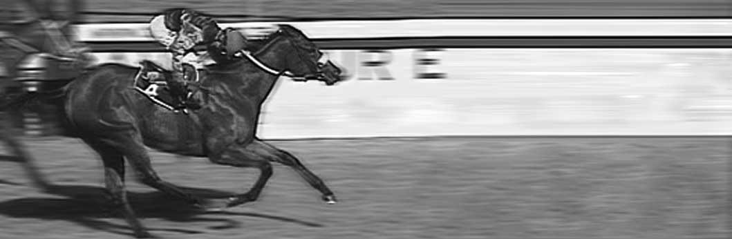 Sparkling-Gem-Race